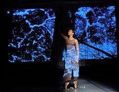 Vipassana, vidjeti stvari kakvima one uistinu jesu, koreografkinja i izvođačica Maja Drobac