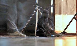 Poluinterpretacije ili Kako objasniti ples nemrtvom zecu, BADco., kor. Nikolina Pristaš, foto: Lovro Rumiha