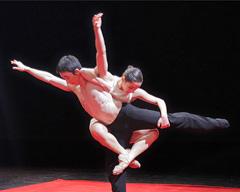 Nederland Dans Theater II: Subject to Change, kor. Sol León i Paul Lightfoot